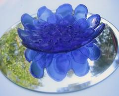 sininen kukka