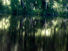 Hiljaisuus/Silence
