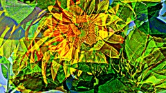 Iloinen kukka/Joyful flower