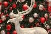joulu-kuva