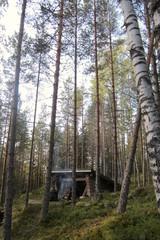 metsastys