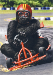 karting.png&width=140&height=250