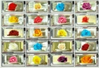 roses_vending_machine.jpg&width=140&height=250