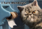 i_hate_mondays.png&width=140&height=250