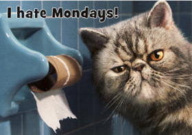 i_hate_mondays.png&width=280&height=500