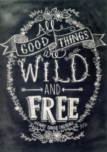 wild_and_free.png&width=280&height=500