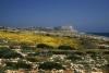 Kypros Cape Greko