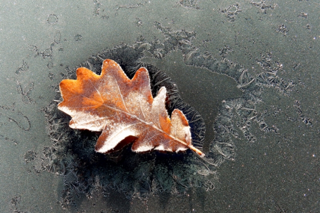 Talvi saa odottaa