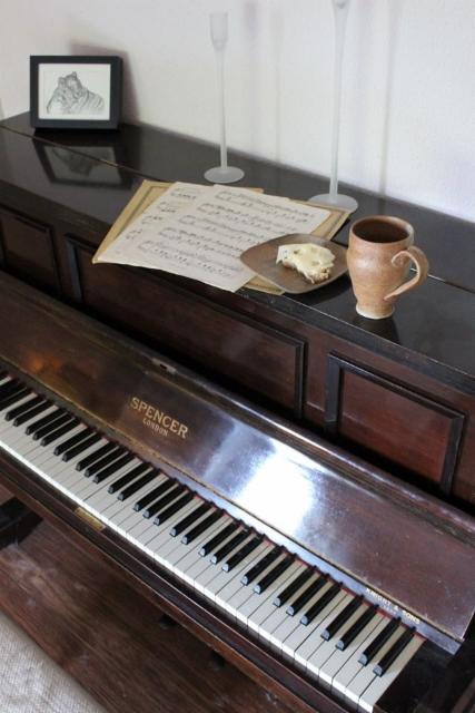 muki_ja_piano