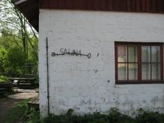 kyl�sauna