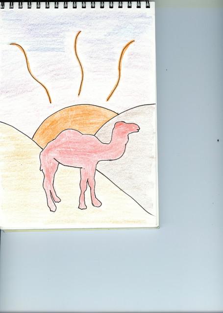 Kuva 20. Punainen kameli autiomaassa auringon laskiessa