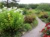 Ainolan puutarhaa