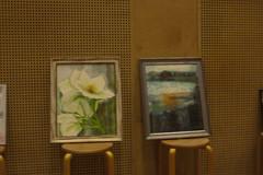 orkidea ja maisema
