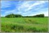 Vihreat niityt