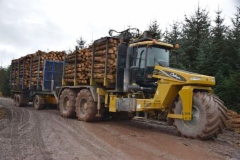 Special made forwarder - Scotland