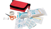 first-aid-kit---20-pcs---clip..jpg