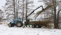 Traktorikuski Stickan siirtää rantaan rahdatut puut poisvietäväksi