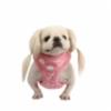 loveletter_pink.jpg&width=200&height=250&id=158813&hash=98ffc46e4c64921458aa708dacf78848
