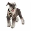 pama-ac978-beige-dog.jpg&width=200&height=250&id=158813&hash=98ffc46e4c64921458aa708dacf78848