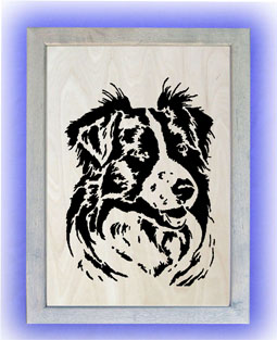 18-125_border_collie_p.jpg
