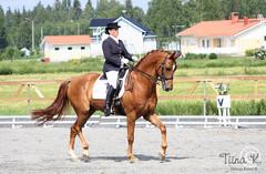 Elina Westerlund - Flying Heart