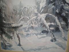 Metsän sylissä
