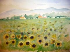 """Toscanan auringot"""