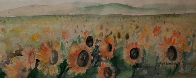 Toscanan auringot tapetilla