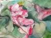 Kukkia Madeiralta