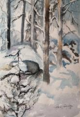 Metsä kutsuu