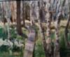 Pitkospuut