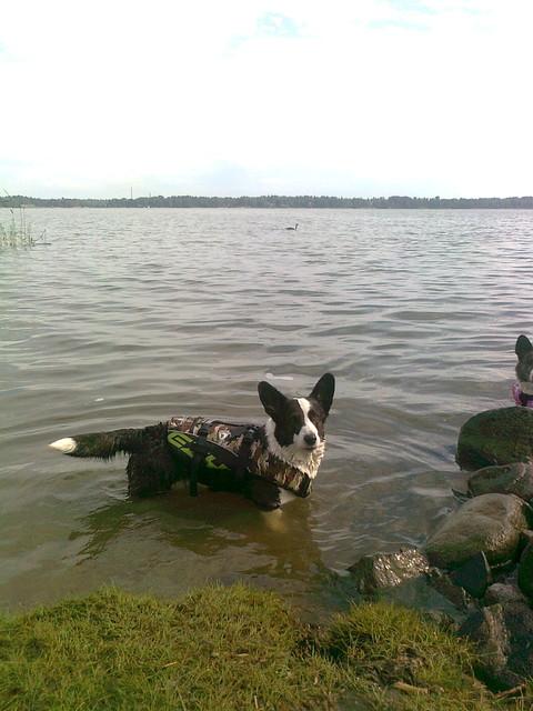 Emma uimareissulla.