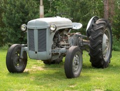 ferguson 1950