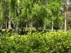 hautausmaa 9