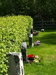 hautausmaa 11