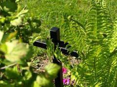 hautausmaa 12