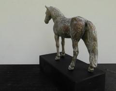 hevonen_3_takaa
