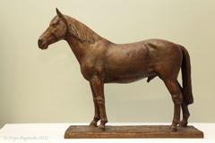 1_hevonen