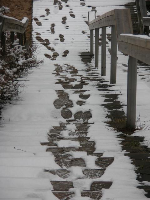 Jälkiä portaissa
