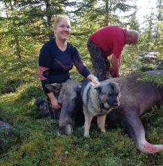 Heinin eka omalle koiralle Riskalle