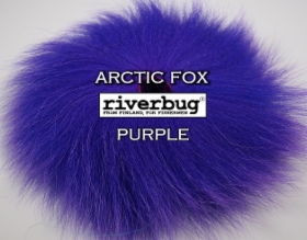 arctic_fox_riverbug.JPG&width=280&height=500