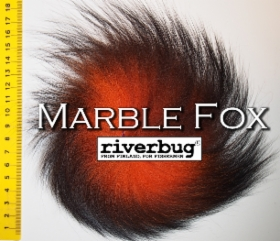 marble_fox_riverbug.JPG&width=280&height=500