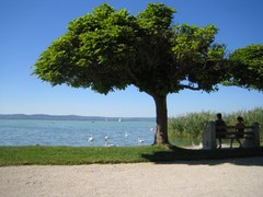 Balaton järven rantaidylliä