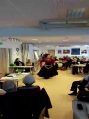 NAISTENPÄIVÄKERHOSSA 7.3.2019