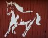 hevonen_horse