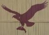 kalasaaski_osprey