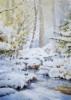 winter_study
