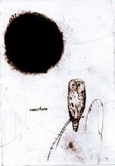 ei-pollompaa