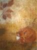 ruskakettu-2015-pastellimaalaus-70x50sp
