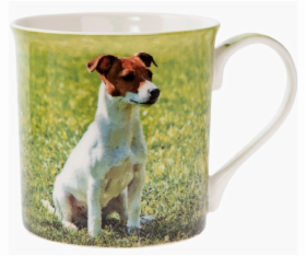 Jackrussel.PNG&width=280&height=500